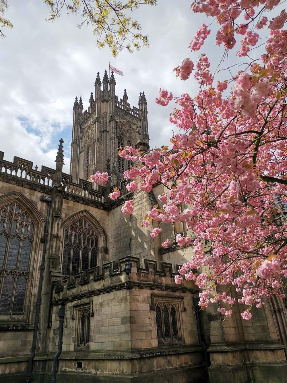 Katedrala u Mančesteru je bila teško oštećena u nemačkom bombardovanju u decembru 1940.