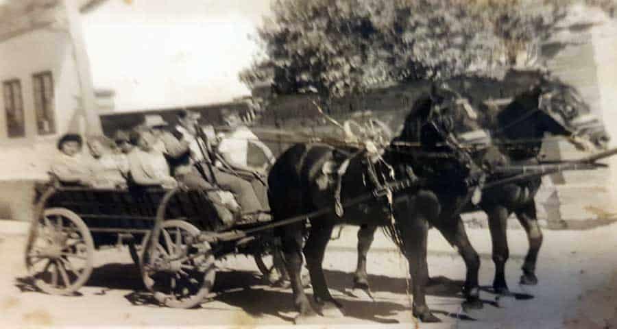 Na konjskoj zapregi na seoskoj slavi