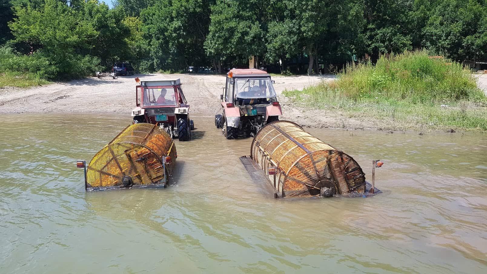 """Begečki izum: """"Kupanje"""" povrća u Dunavu"""