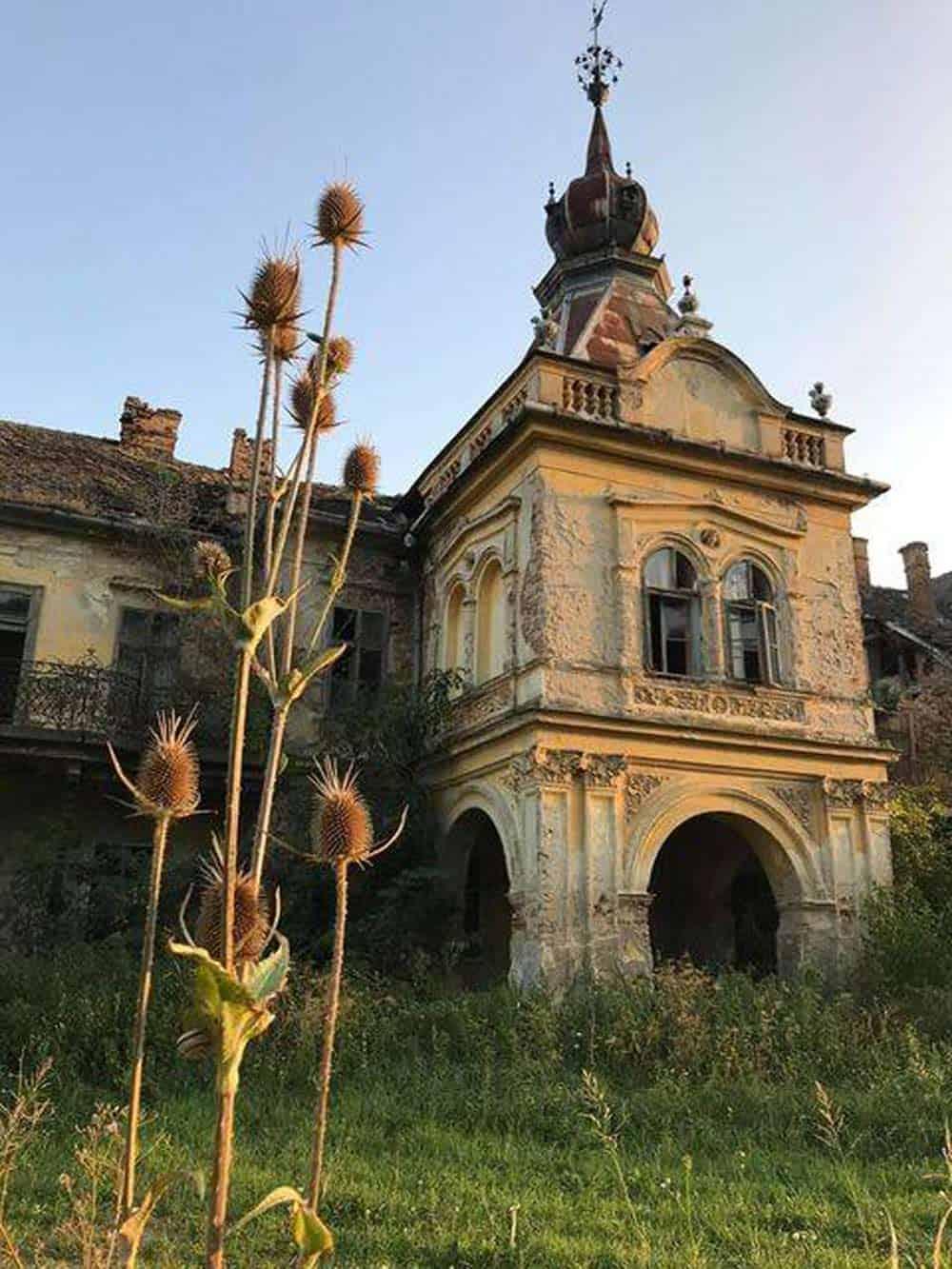 OBRASTAO U VEGETACIJU: Dvorac Bisinger u Vlajkovcu