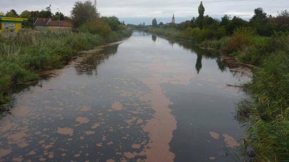 Ekološka katastrofa: Kanal Dunav-Tisa-Dunav danas
