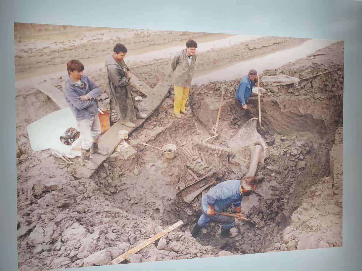 Decembar 1996: Pronalazak skeleta mamutice Kike