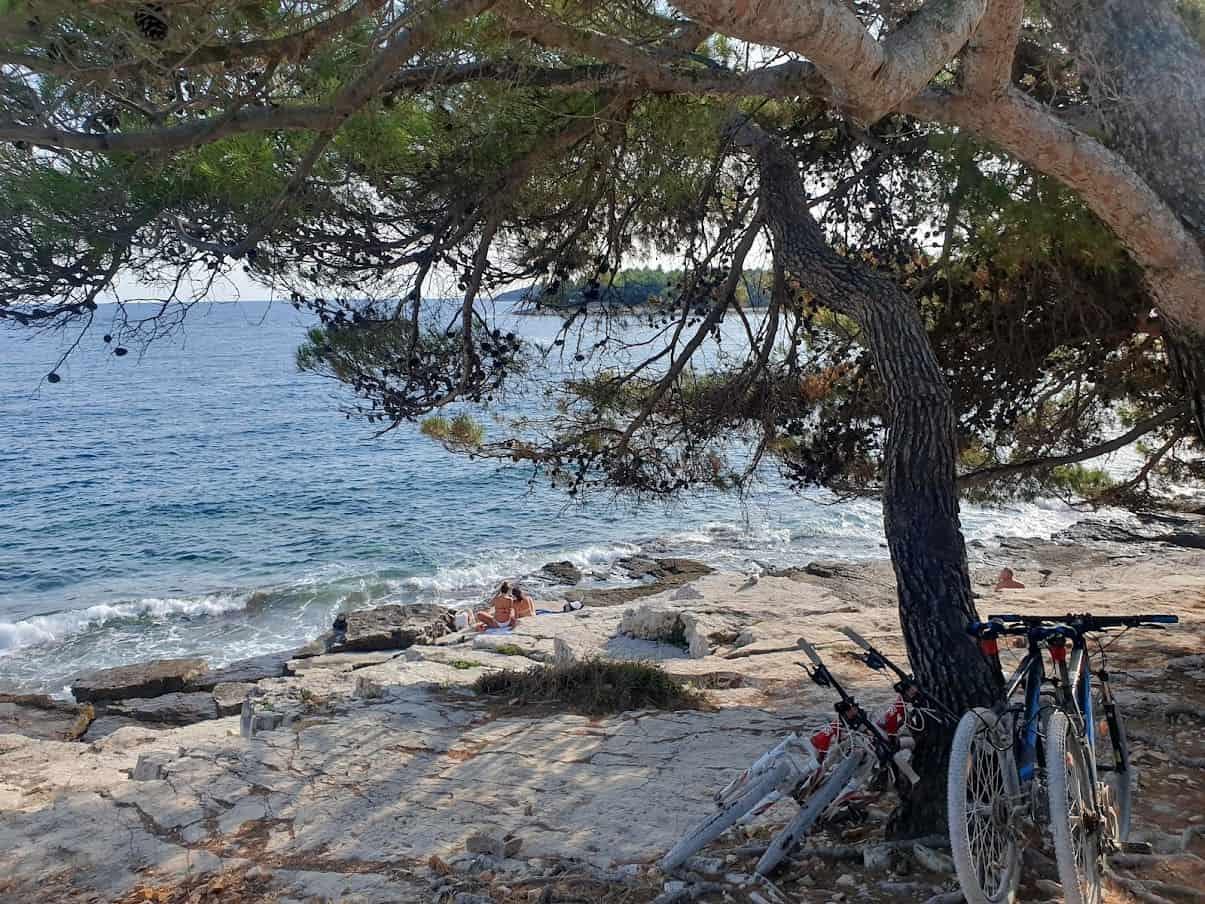Bicikli, talasi i hladovina bora: Jedna od divljih plaža pored Rovinja