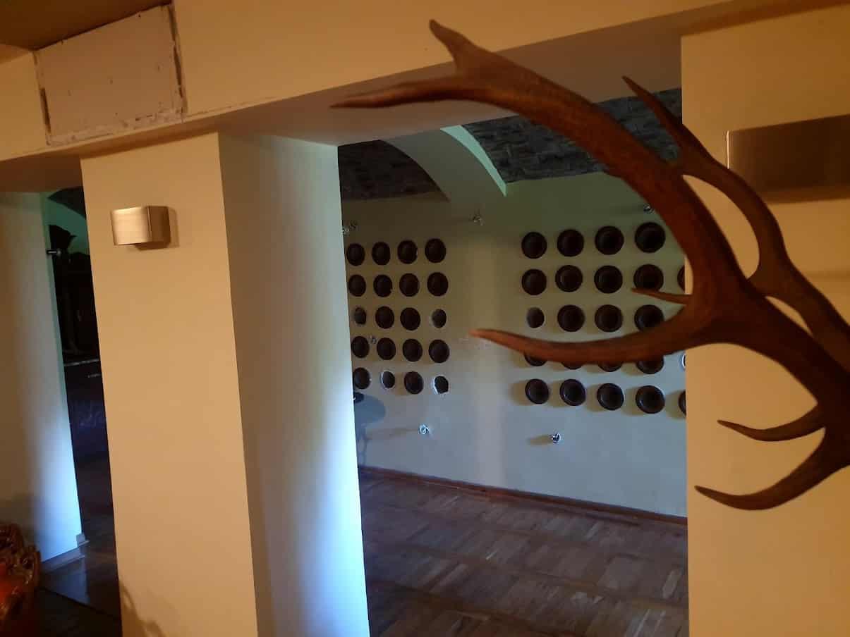 UZ SAMU GRANICU SA RUMUNIJOM: Stepenište i vinski podrum dvorca Nojhauzen
